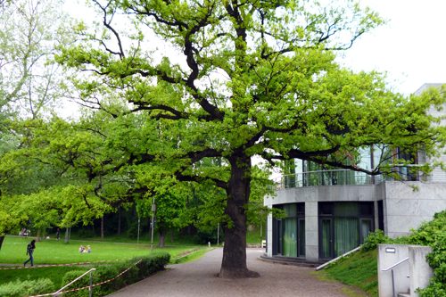 New Bauhaus Museum / on the 'Weimarhallenpark'