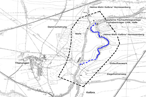 FFH-preliminary research renaturation linkage of old tributaries of the river 'Helme' near Kelbra